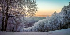 "blackteaandlanguages: """" Dobogókő, Hungary by photolandhu "" "" It's always Christmas in my winter wonderland. ❄"