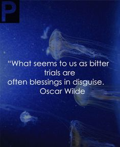 147 Wise Oscar Wilde Quotes Thatll Make You Smarter Clever Quotes, Great Quotes, Inspirational Quotes, Be Wise Quotes, Dorian Gray, Dale Carnegie, Jellyfish Quotes, Cool Words, Wise Words