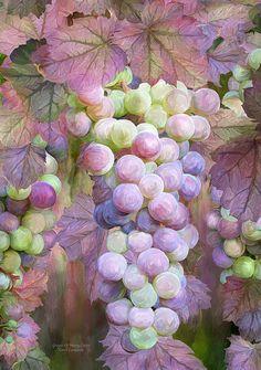 Grapes Of Many Colors Mixed Media