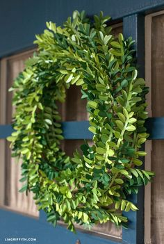 Paper Boxwood Wreath For Spring by Lia Griffith.  Tutorial includes directions for using a Cricut to cut out the leaves, and a PDF file to cut the leaves by hand.