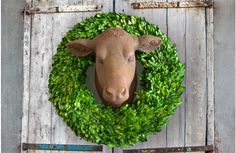 Our cow head wall mount is made of estate stone and is an absolutely beautiful yearling heifer head. Use this wall mounted cow head in your kitchen or living room! Visit, www.decorsteals.com OR www.facebook.com/decorsteals #YearlingHeiferHead #CowHeadWallMount #WallMountedCowHead