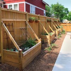 Gardening 101 - Farm and Garden - GRIT Magazine Build a container garden for vegetable gardening using full sun perennials and root vegetables.Build a container garden for vegetable gardening using full sun perennials and root vegetables. Privacy Fence Landscaping, Backyard Privacy, Backyard Landscaping, Landscaping Ideas, Privacy Fences, Privacy Fence Decorations, Garden Privacy, Diy Fence, Fence Garden