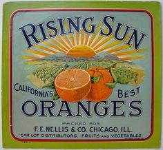 "Rising Sun brand oranges - Chicago, ILL - interesting that the label says ""California's Best Oranges"""