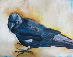 Crow front