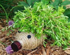 pots de fleurs originaux et créatifs à fabriquer soi-même en bouteilles en plastique enveloppées de corde et transformées en hérissons