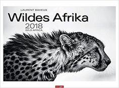 Kühlschrank Jahreskalender : Die 62 besten bilder von fesche kalender für 2018 2029 2035