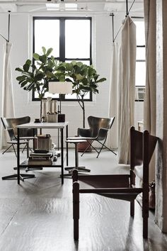 Workstead i Brooklyn - shop design, light, white walls, plants