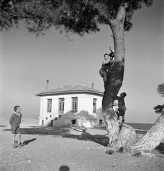 """Boys at """"Saint Andrew"""" queen's relief fund. Attica, Voula Th. Vintage Pictures, Old Pictures, Old Photos, Benaki Museum, Greece Pictures, Educational Programs, Most Favorite, Virtual Tour, Once Upon A Time"""