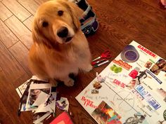 How To Make a Vision Board By Drops Of Yoga
