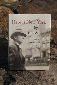 E B  White s Prophetic Essay on Destruction in New York City