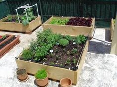 roof-garden04