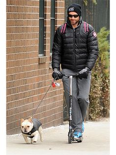 Hugh Jackman lets French bulldog Dali take the lead while scooting through New York City on Friday March 7, 2014