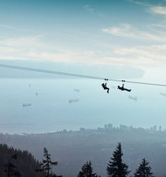 Grouse Mountain Zipline | soar high above the city at speeds up to 80km/h.