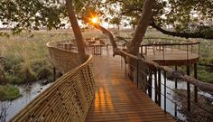 A-Botswana-Safari-at-andBeyond-Sandibe-Okavango-Delta-Lodge-47