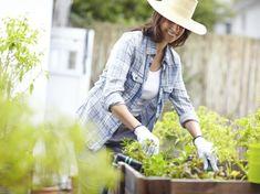 9 Tools Every Beginner Gardener Needs Gardening For Beginners, Gardening Tips, Planting Flowers, Garden Tools, Watering Plants, Women, Success, Dreams, Fashion