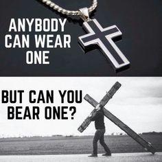 Can u bear one?