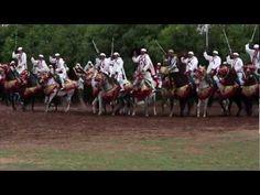 Morocco In Motion – La Tbourida (Fantasia) au Maroc – NOW Maroc