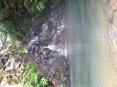 The Ice Ponds, a nice little swimming hole/ waterfall on the island of Oahu in Hawaii. One of my favorite spots in Hawaii