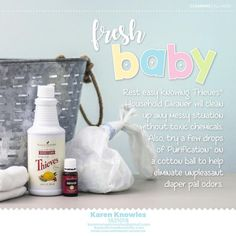FRESH BABY - with Purification essential oil and Thieves Household Cleaner. Essential Oils For Babies, Essential Oil Safety, What Are Essential Oils, Young Living Essential Oils, Thieves Household Cleaner, Thieves Cleaner, Purification Essential Oil, Young Living Oils, Recipe For Mom