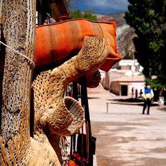 Purmamarca, Jujuy, Argentina #pocket_dof @pocket_dof @argentina_ig #dof_addicts #purmamarca#cacti #fabrics#streetphotography #naturephotography #landscapephoto #landscapepics #andes#native #loom #cactuslovers #colourful #nikontop #nofilter #nikonofficials #theworldimage #backpackers #traveler #puna #altiplanic #altitude #scenicview