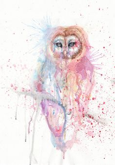 'Different Owl' by Sophia Violette - tattoo maybe Owl Watercolor, Animal Attack, Black Aesthetic Wallpaper, Colorful Animals, Vintage Owl, Art For Art Sake, Owl Art, Love Painting, Types Of Art