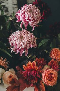 Chrysanthemum, the flower of November