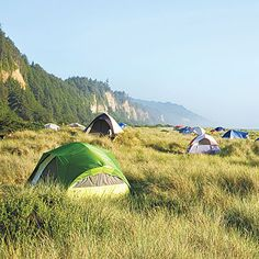 In Prairie Creek Redwoods State Park, Gold Bluffs Beach (pictured; $35; 707/465-7335) lets you stake a tent between the Pacific and redwood trees; neighbors may include Roosevelt elk. Gold Bluffs opens in May; to camp before that, check out the park's nearby Elk Prairie