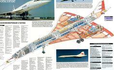 Concorde - Aircarft Cutaway