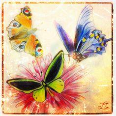 Mariposas con lápices de colores