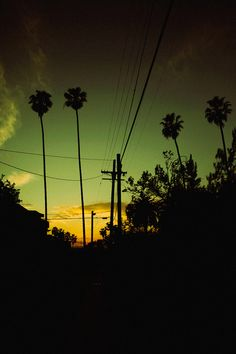 when the palm trees bow their head, no matter how cruel i've been, LA you always let me back in <3