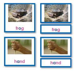 These engaging cards help the young child enter the world of reading. The blue series features three or four letter simple phonetic words such as frog and flag. Different Words, Montessori, Card Stock, Language, Lettering, Teaching, Children, Prints, Shelf