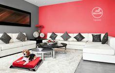 Cama parra perro con la mejor tecnología, El mejor descanso y estilo para tu mascota www.airdesignpets.com