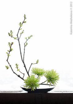 Fresh leaves give us hope - Ikebana - Arranjos Contemporary Flower Arrangements, White Flower Arrangements, Flower Arrangement Designs, Ikebana Flower Arrangement, Ikebana Arrangements, Deco Floral, Arte Floral, Art Floral Japonais, Arreglos Ikebana