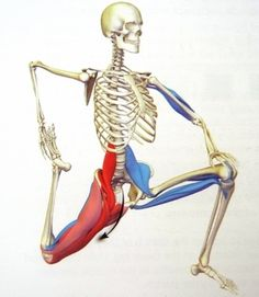 You can see here how the muscles from your legs attach to your lower spine.  If they are tight and short, they pull on your spine and cause low back pain.  (That's what muscles do!)  There are different muscular causes for back pain but this psoas muscle stretch may be just what you need for lower back pain relief.   http://ideasforbedroomdecor.blogspot.com