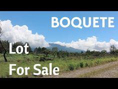 ID: 601     Tipo: Finca  Precio (USD): $375,000  Área Total: 2.1 hectáreas      Dirección: Chiriquí. Boquete, Las Trancas. Chiriquí  Descripción: Una finca ideal para desarrollar casas!
