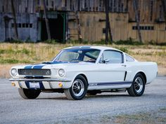 66 Mustang Shelby GT350