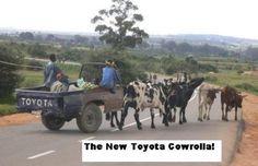 Rubrica auto Epic Win: pick-up Toyota a trazione. Car Jokes, Car Humor, Funny Jokes, Funny Cars, Driving Humor, Funny African Pictures, Funny Photos, Silly Photos, Toyota
