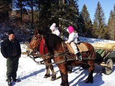 Winter in Vama Buzaului, Ciucas Mountains, Pastel Chalet Winter Season, Riding Helmets, Pastel, Romantic, Horses, In This Moment, Seasons, Mountains, Animals