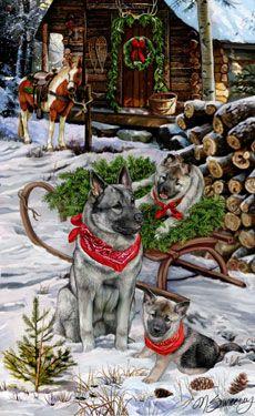 Norwegian Elkhound Christmas Delivery - by Margaret Sweeney