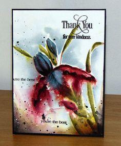 Iris rouge vin 001   by micheline.jourdain
