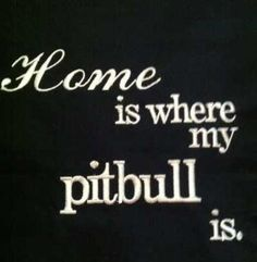 The Truth About Pit Bulls -
