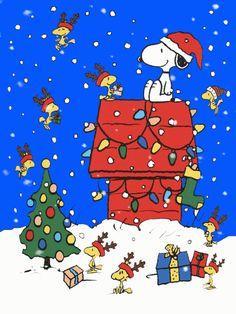 Christmas Jokes, Peanuts Christmas, Charlie Brown Christmas, Charlie Brown And Snoopy, Christmas Art, Christmas Greetings, Winter Christmas, Xmas, Peanuts Cartoon