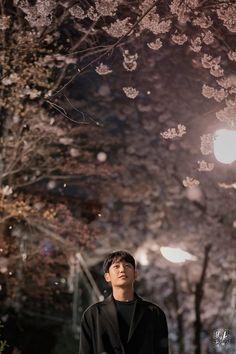 One Spring Night (봄밤) - Drama - Picture Gallery Han Ji Min, Jung In, Kim Joon, Night Pictures, Kdrama Actors, Drama Korea, Drama Movies, Disney, Spring