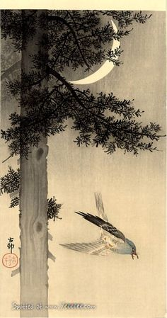 44 The Beautiful Oriental Art of Koson Ohara | 134 Pics