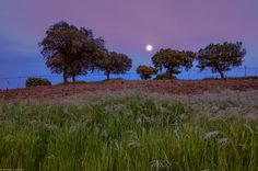 Moonstruck by Ricardo González Gascón on 500px