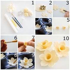 Réalisation d'une fleur simple en pâte à sucre : recette illustrée, simple et facile