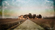 Photos taken during my year living in Friuli