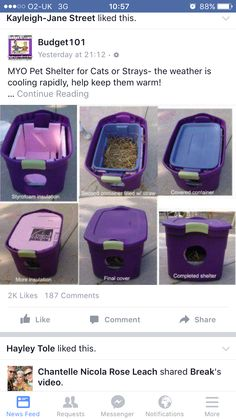 Homemade cat bed for strays                              …