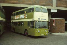 WFE48 Lincoln bus photograph | eBay
