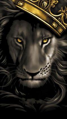 Black and grey lion with gold crown. X OGABEL Poster Og Abel Art, Art Chicano, Lion Painting, Lion Wallpaper, Wallpaper Backgrounds, Lion Pictures, Leo Lion, Lion Of Judah, Lion Art